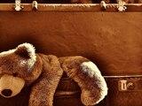 teddy_koffer_kuscheltier