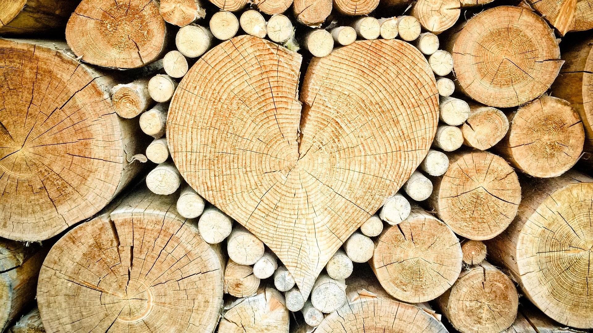 Beim nachhaltigen Bauen sollten möglichst wiederverwertbare Materialen wie beispielsweise Holz verwendet werden.