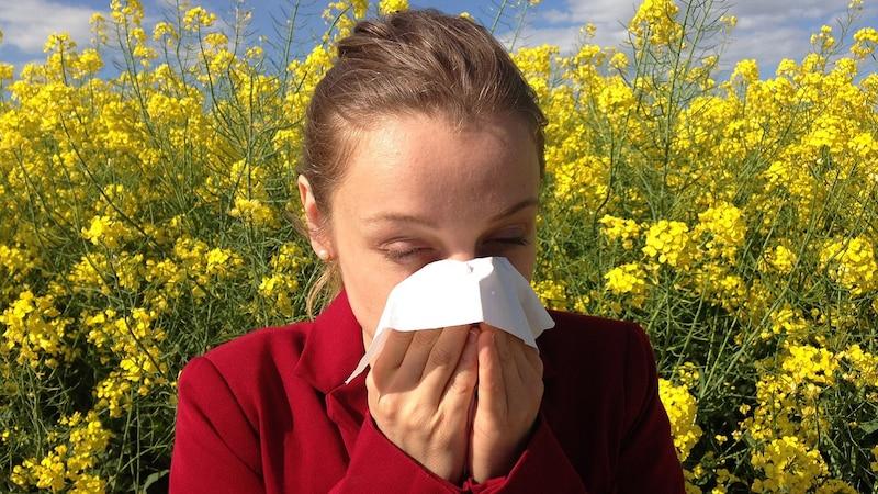 Schwarzkümmelöl gegen Allergie: Das sollten Sie wissen