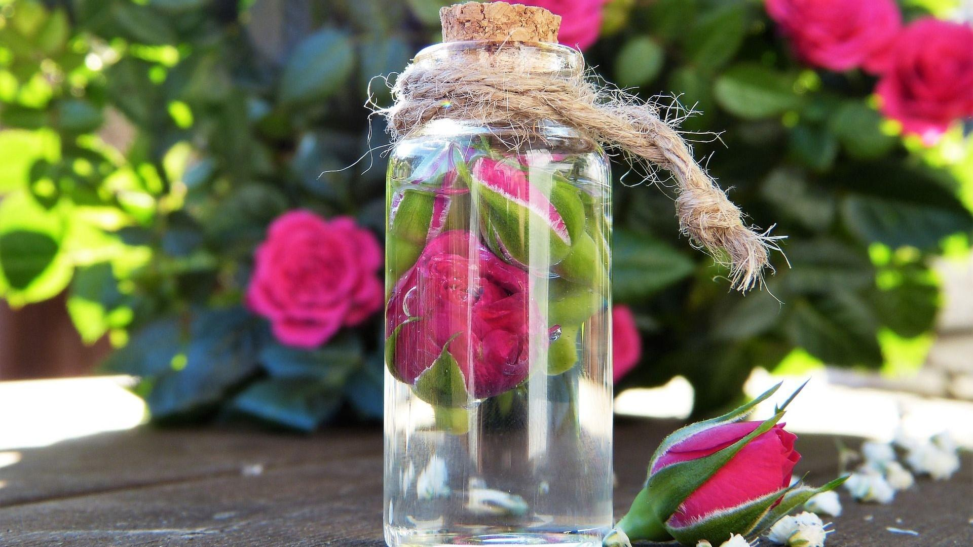 Rosenwasser für die Haare: Das müssen Sie wissen