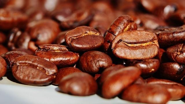 Kaffee als Dünger verwenden - die besten Tipps zum Düngen