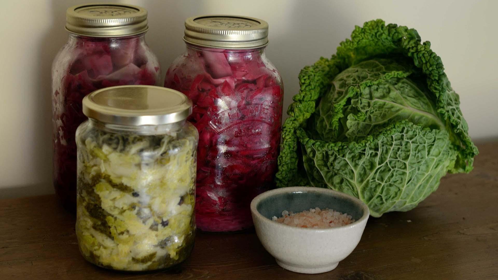 Kohl fermentieren: Wie Sie Sauerkraut selber machen können
