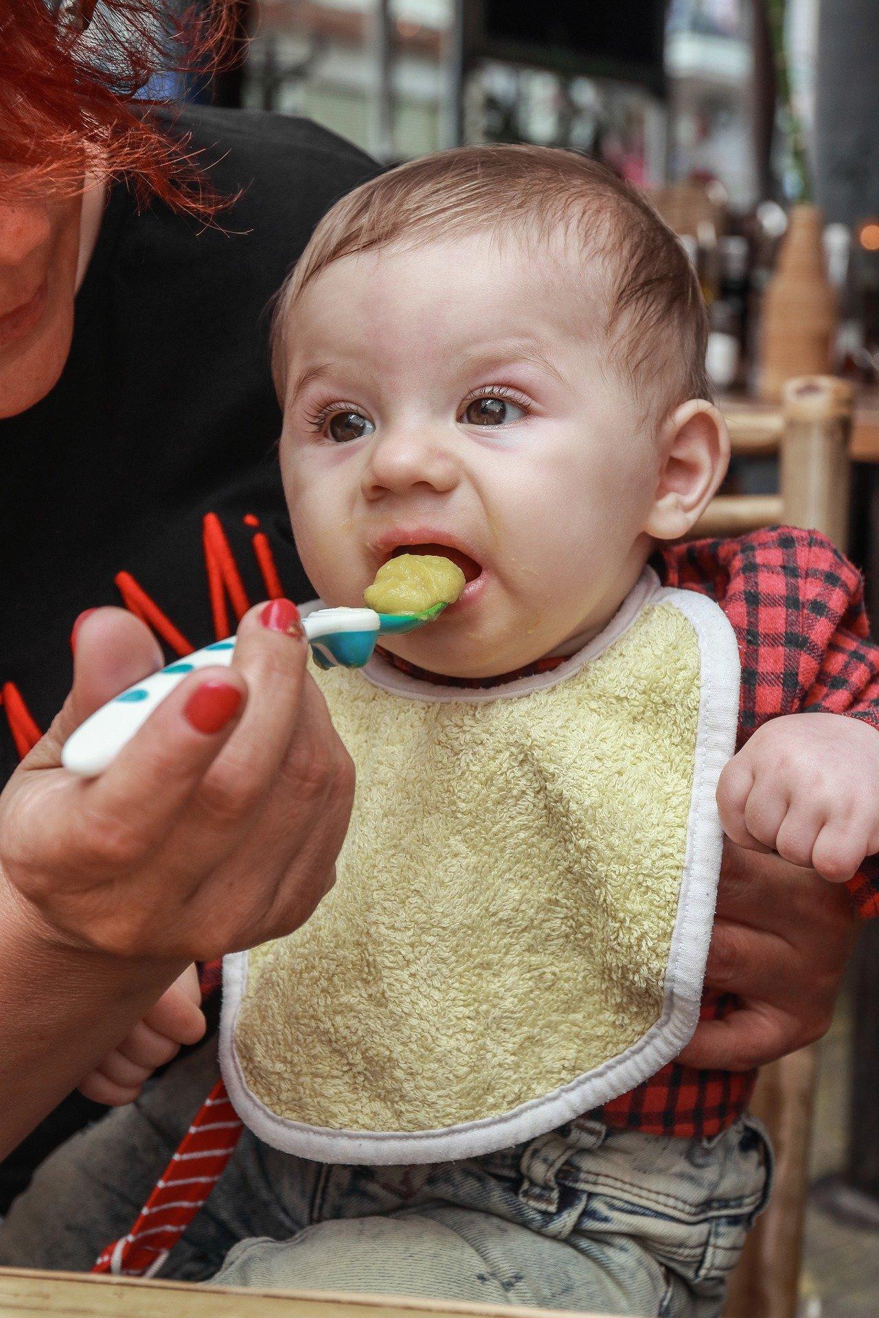 Babybrei einkochen - darauf müssen Sie achten
