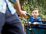 Bollerwagen eignen sich für den Transport von Kindern und Gepäck. Wir hatten fünf Modelle im Test.