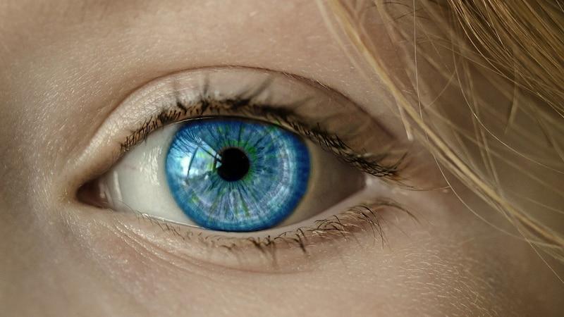 Iris fotografieren: So gelingen die faszinierenden Bilder