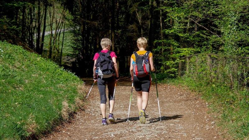 Nordic Walking: Diese Ausrüstung gehört dazu