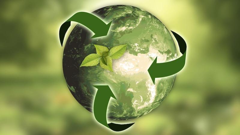 Nachhaltigkeit in Unternehmen: Tipps für einen grünen Berufsalltag