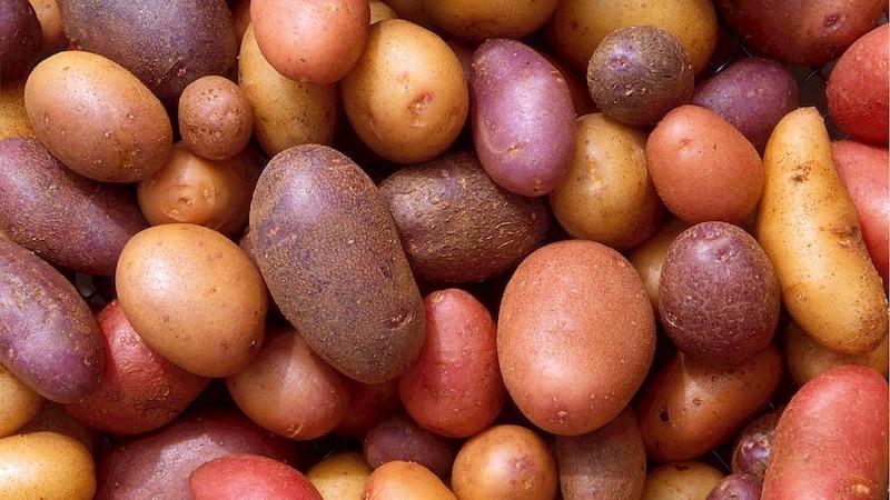 Geschälte Kartoffeln aufbewahren - Tipps zu richtigen Lagerung