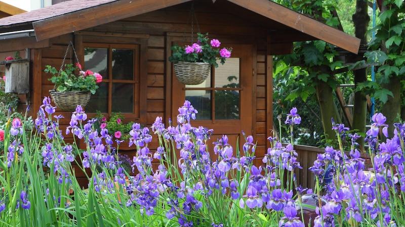 Gartenhaus entsorgen: Das sollten Sie beachten