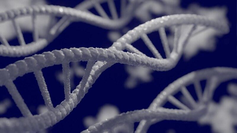Genetische Disposition: Das versteht man darunter