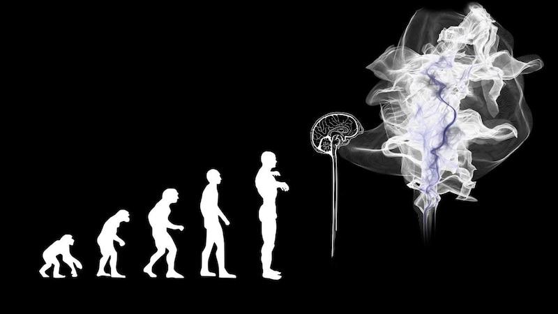 Evolutionäre Psychologie: Das versteht man darunter