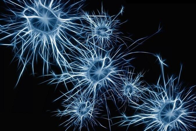 Künstliche neuronale Netze: Das versteht man darunter