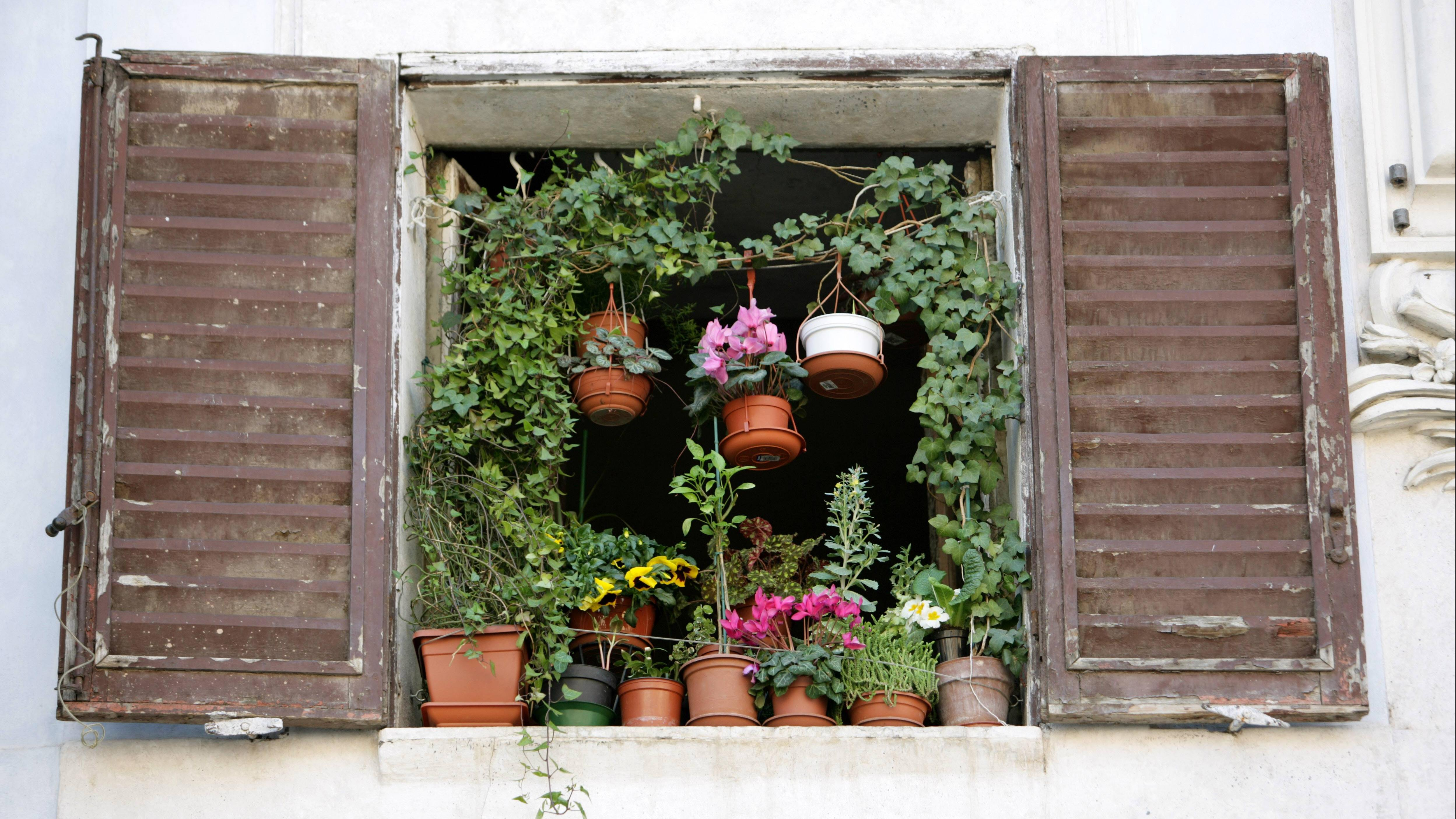 Fenster abdichten - die besten Tipps
