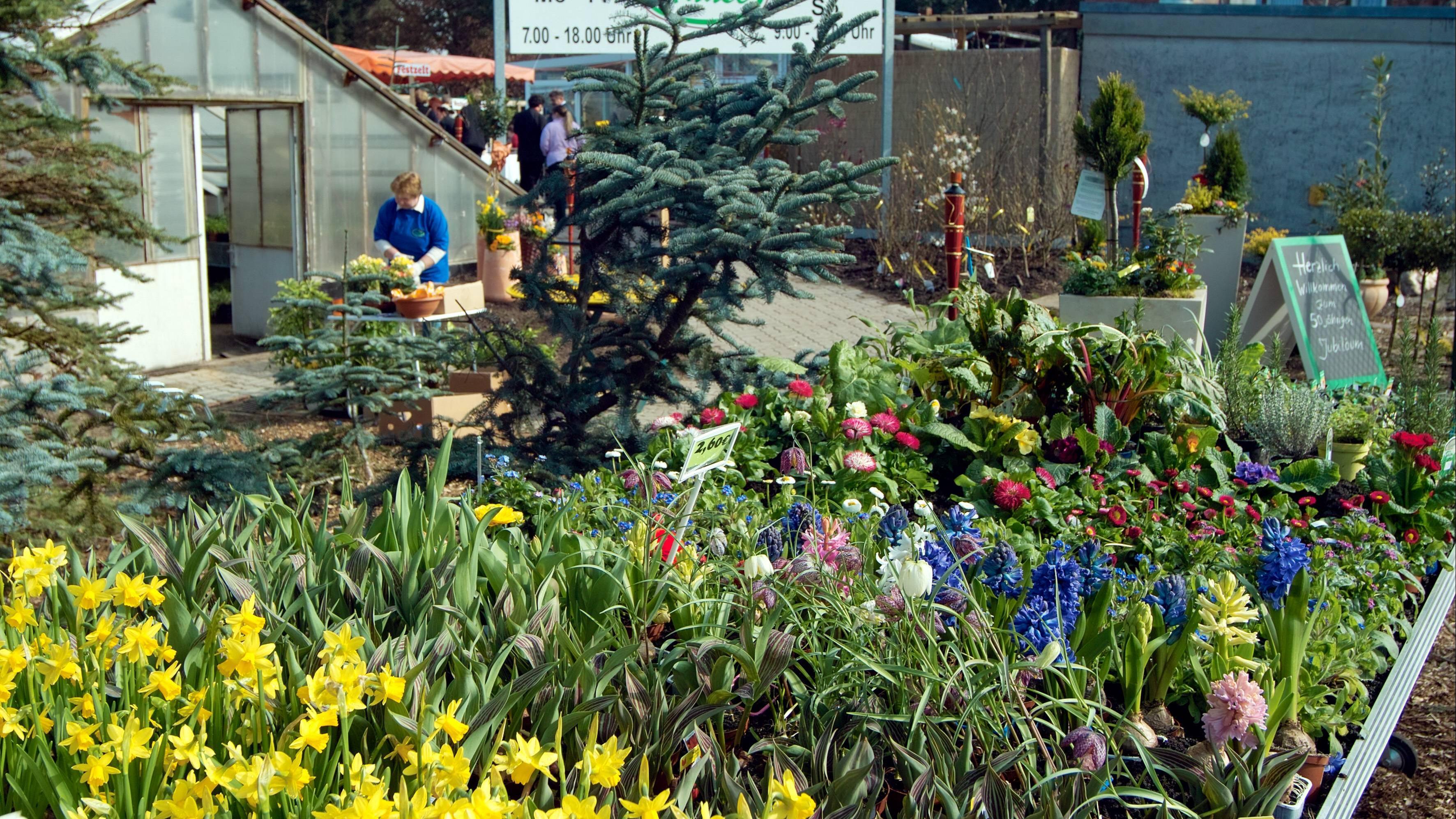 Jobs für Mütter: Mit einer Gärtnerei können Sie sich zuhause selbstständig machen.