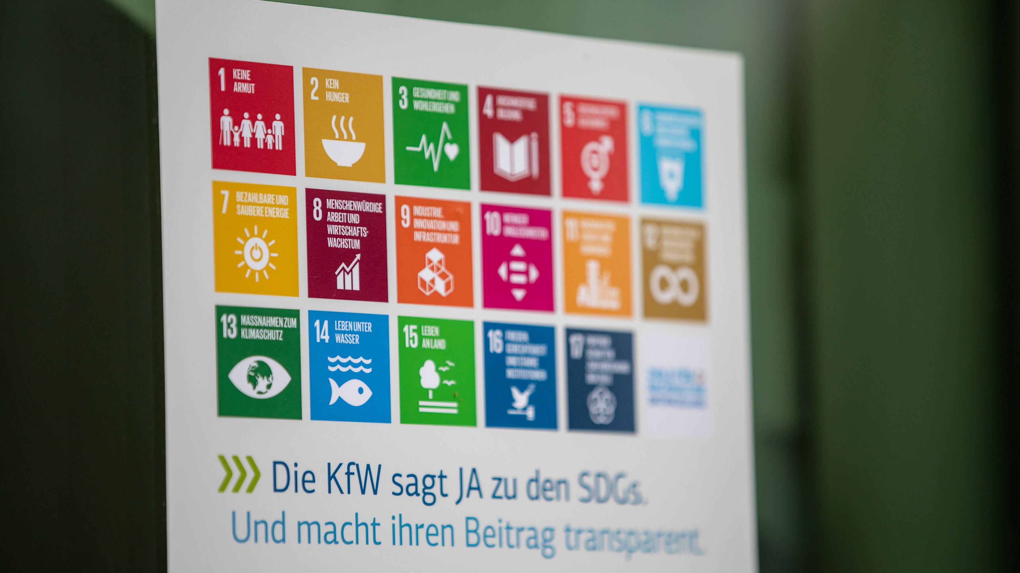 Ziele nachhaltiger Entwicklung (SDG)