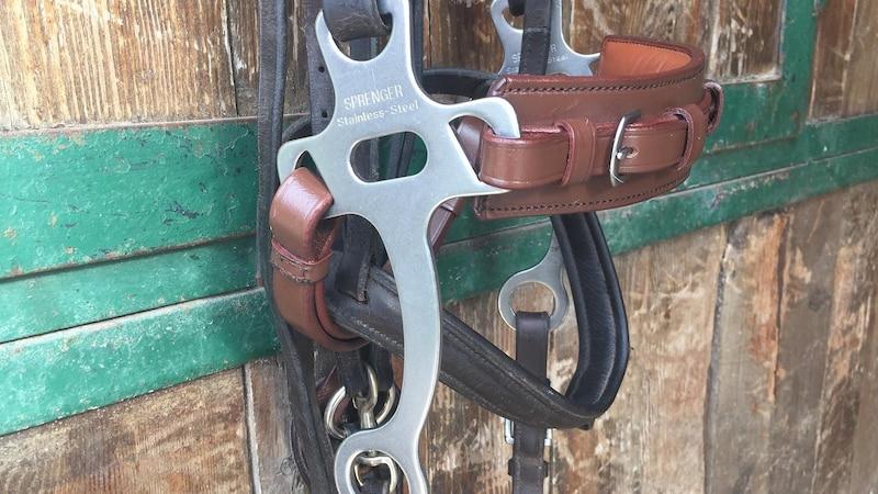Das Hackamore gehört zu den schärferen, gebisslosen Zäumungen und sollte nur von erfahrenen Reiterhänden verwendet werden.