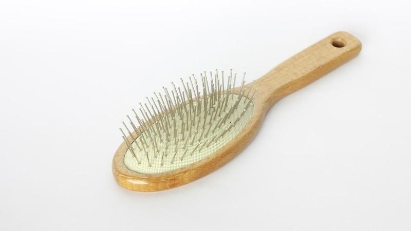 Bei schuppiger Kopfhaut ist regelmäßiges Haarebürsten sehr wichtig.