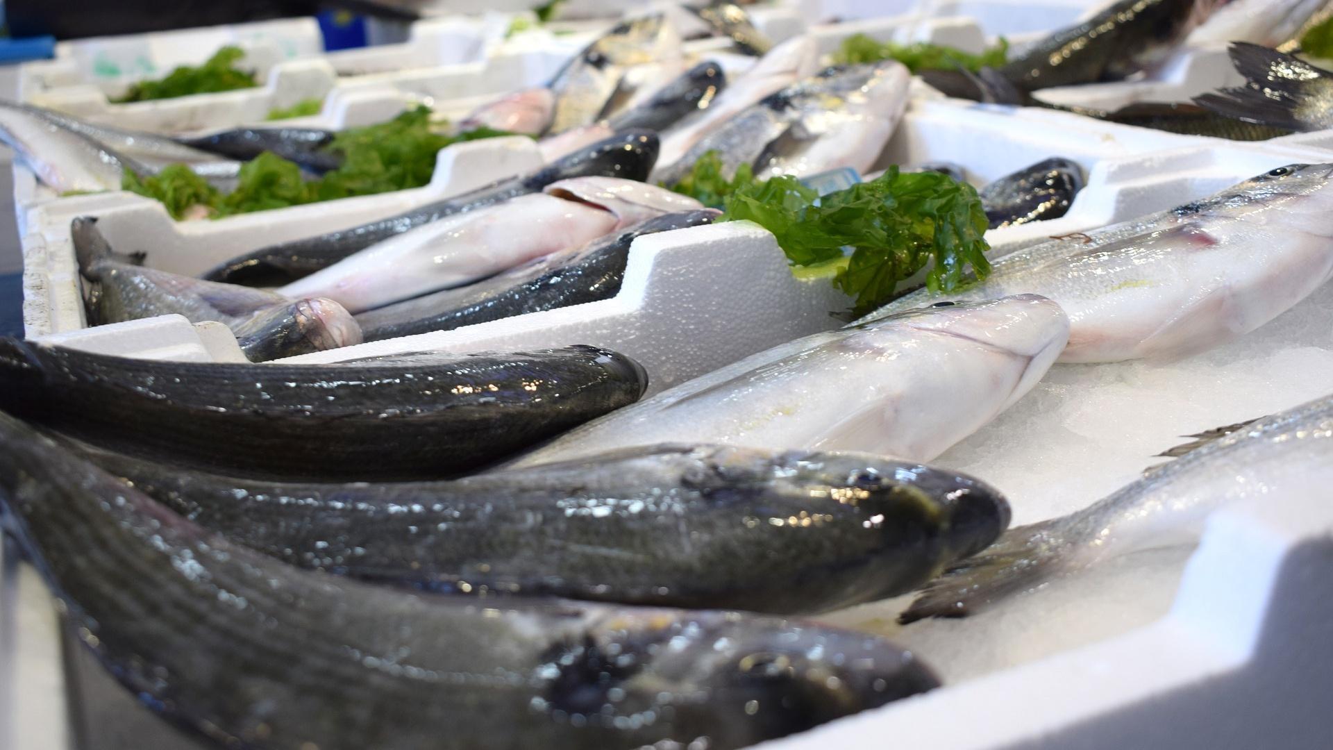 Auch einige Fische und Meeresfrüchte sind im Herbst günstiger