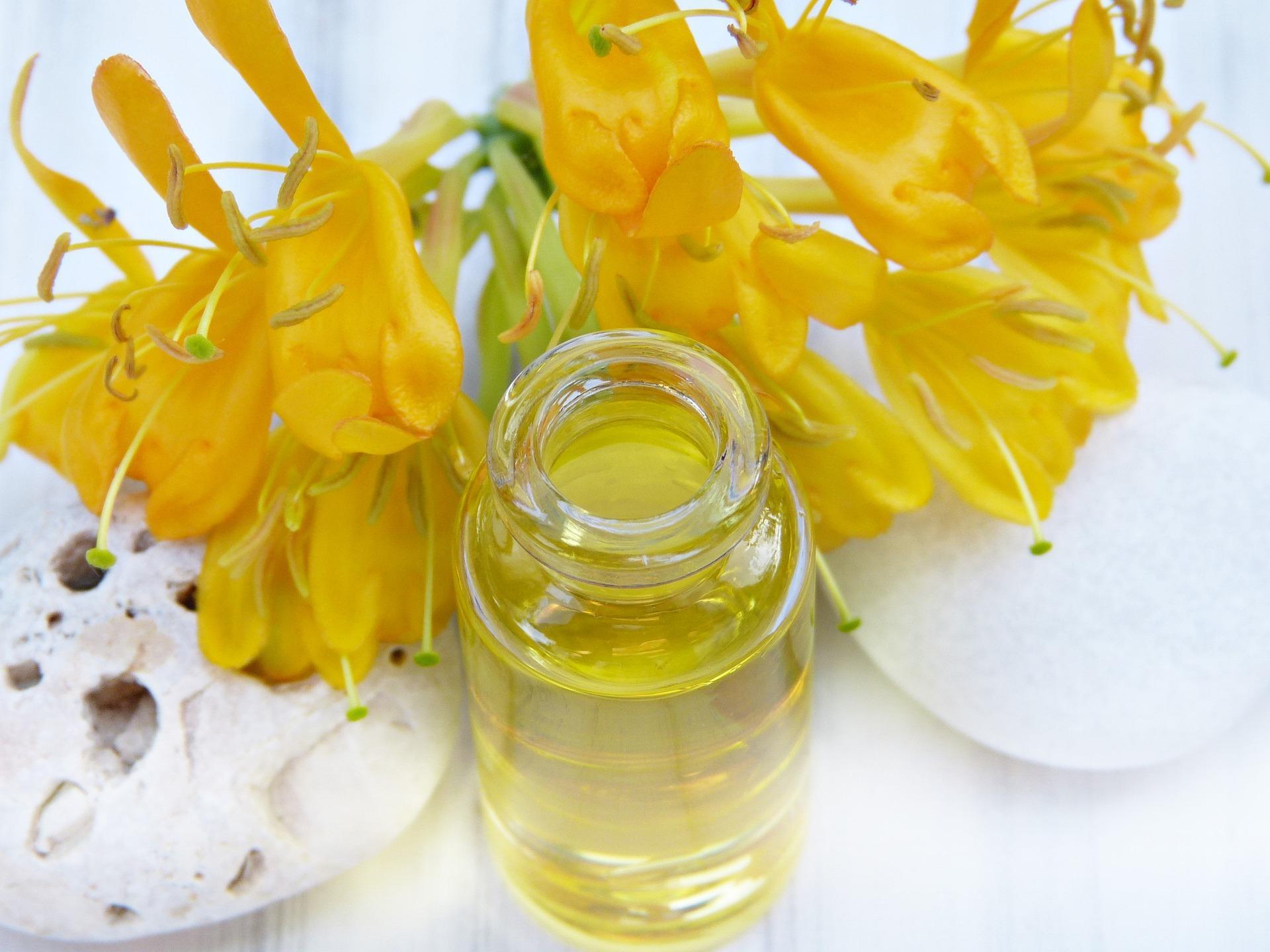 Das Öl der Jojoba-Pflanze wird gerne in Kosmetikprodukten verwendet.