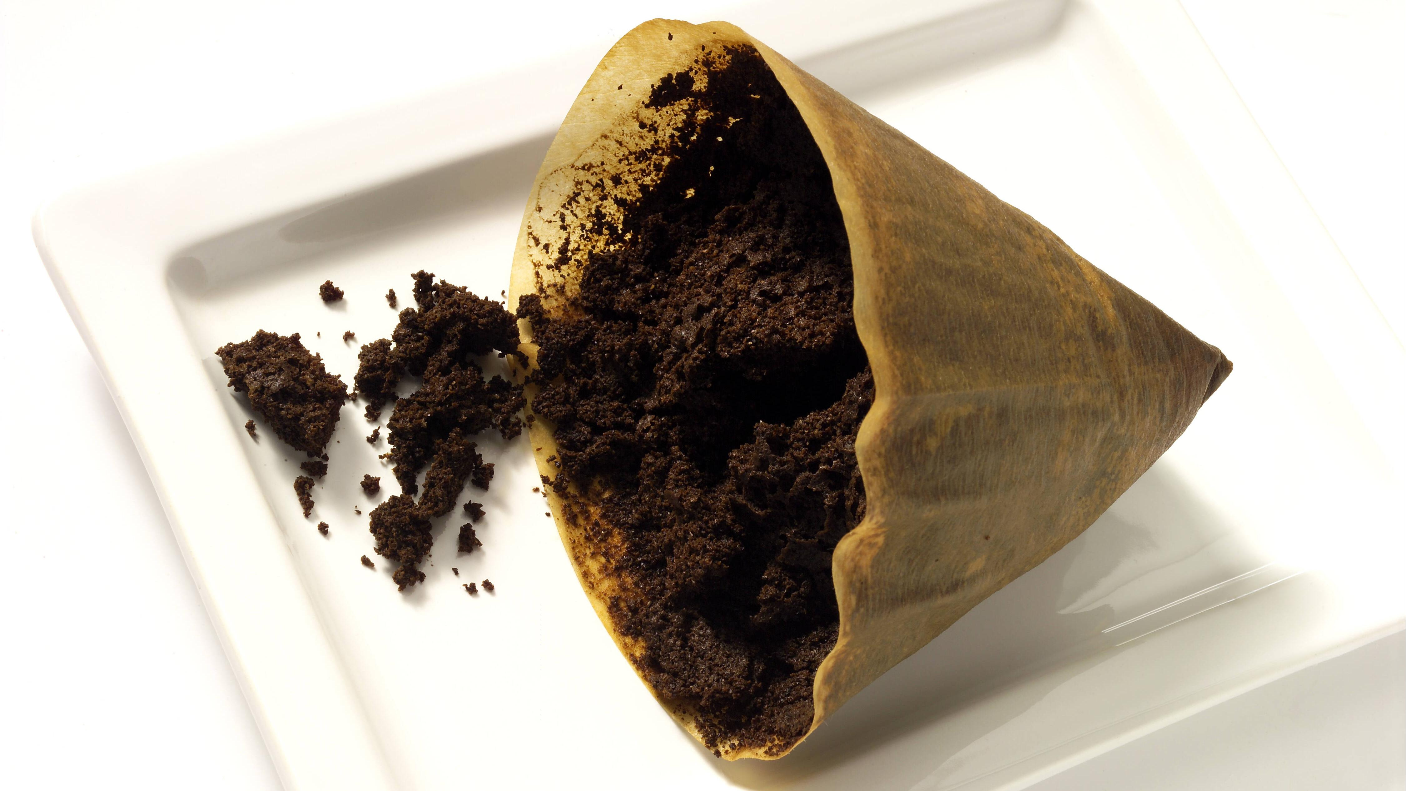 kaffeefilter,kaffeesatz *** coffee filter,coffee grounds fmy-h4u