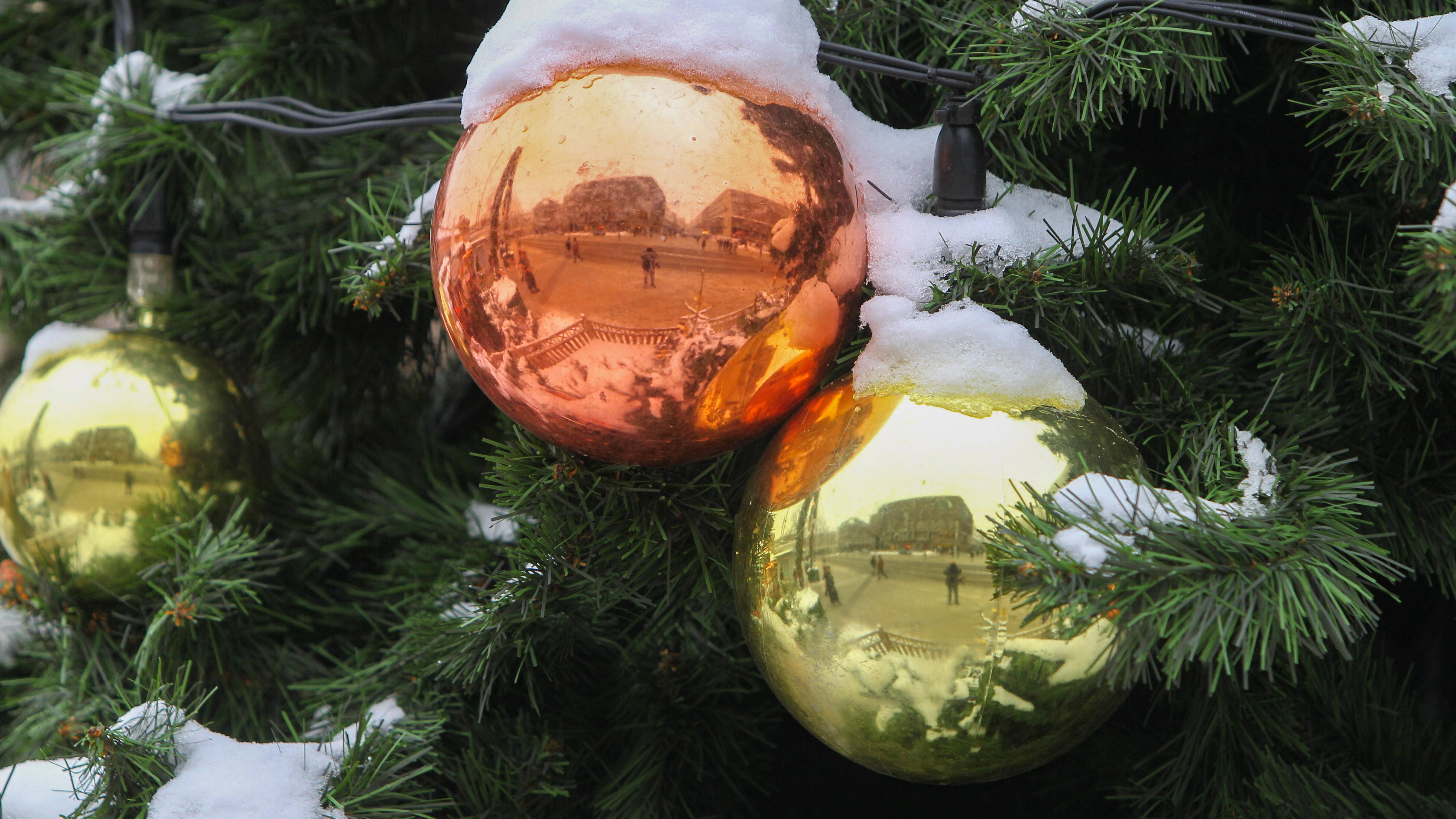 Weihnachtsbaum-Alternative: 7 originelle Ideen