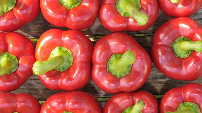 Paprika spielt bei der würzigen Braai-Soße eine wichtige Rolle.