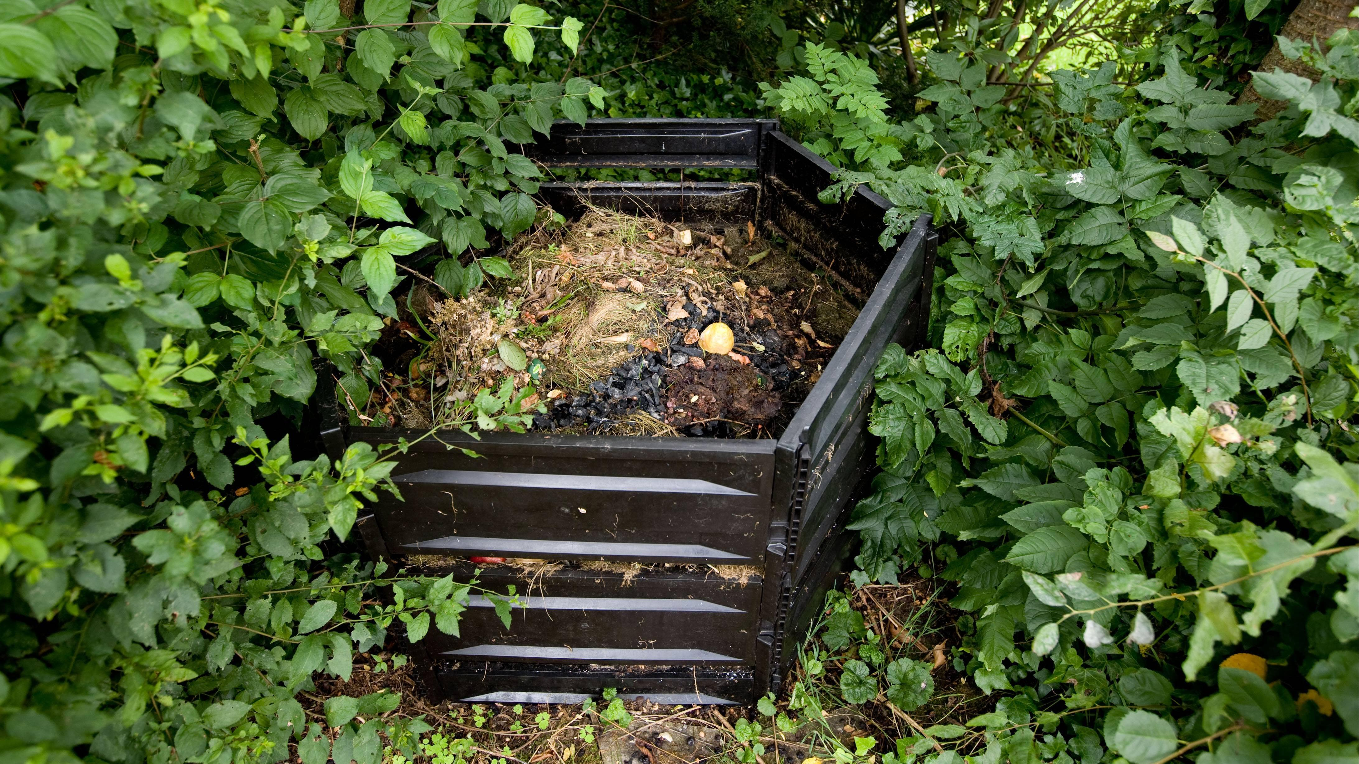 Kompostbeschleuniger auf dem Haufen verteilen