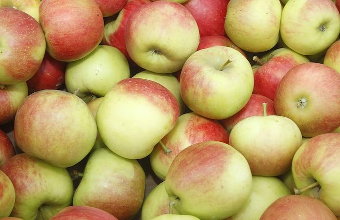 Den Apfel sollten Sie nicht nur zum Abnehmen essen. Das Obst ist äußerst gesund und macht sich deshalb gut auf dem täglichen Speiseplan.