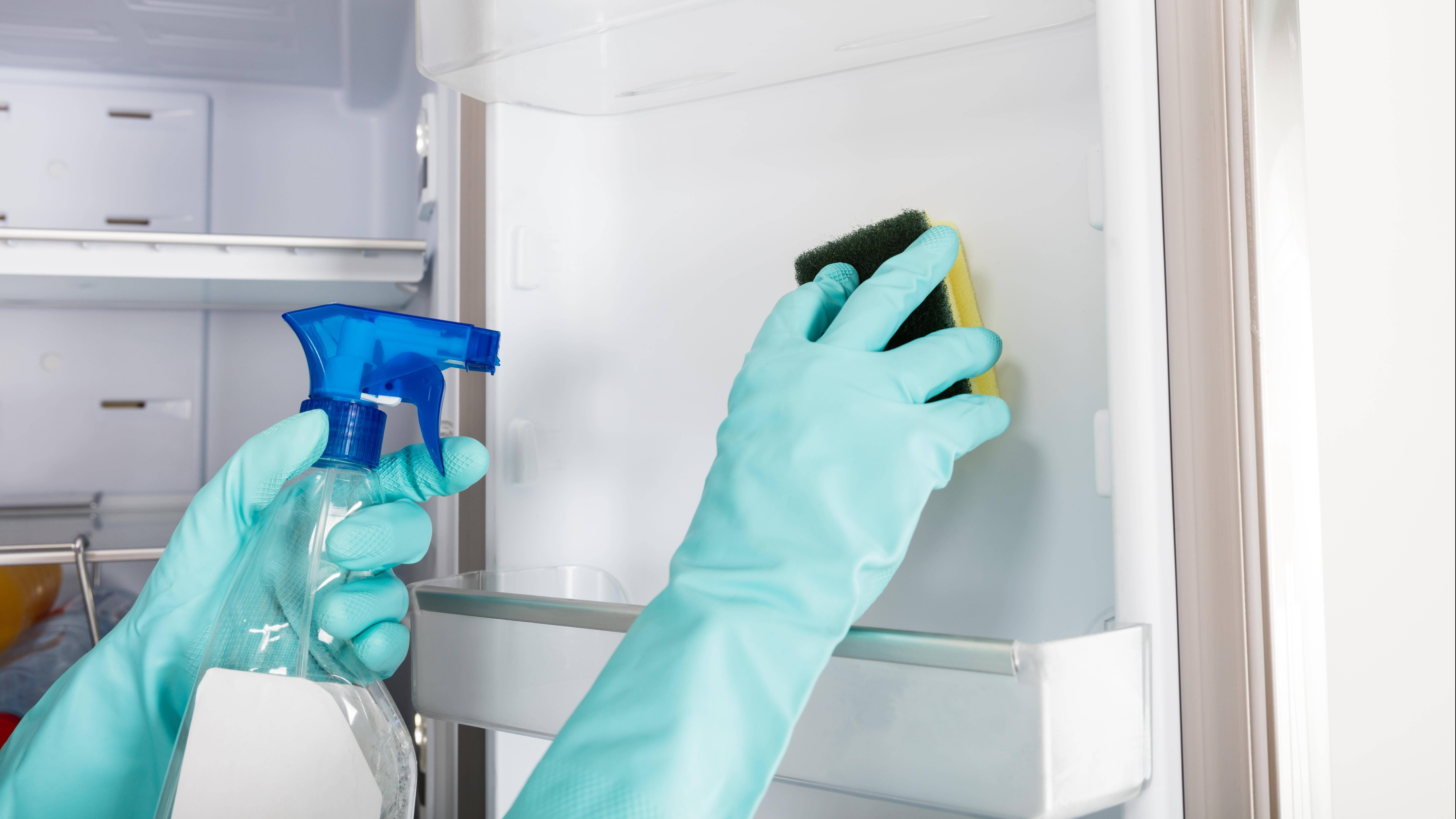 Kühlschrank putzen ohne Abtauen: So klappt's