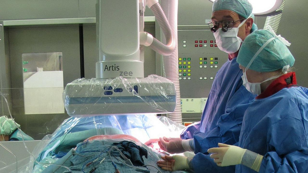 Egal welche Ursache die Splenomegalie hat, bei einem Milzriss muss immer operiert werden.