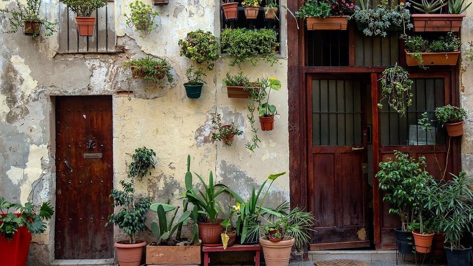 Es gibt viele Möglichkeiten sich einen vertikalen DIY Garten anzulegen.