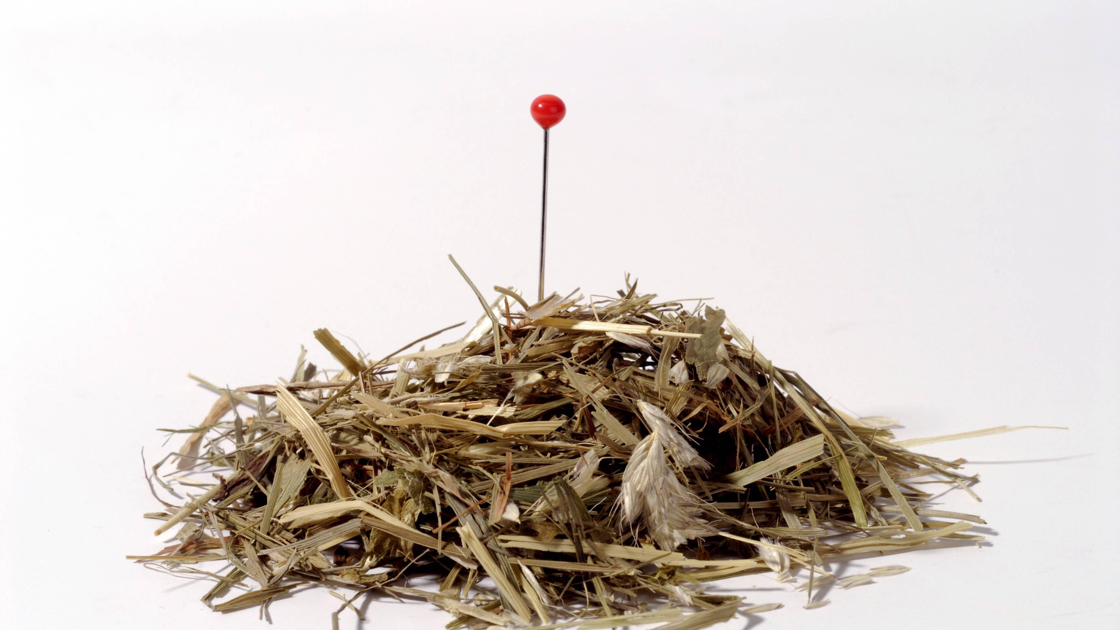 Balsam für die Seele: Das steckt hinter der Redewendung