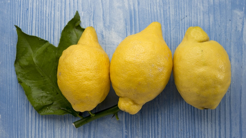 Zitronen lagern: Mit diesen Tipps halten Sie lange