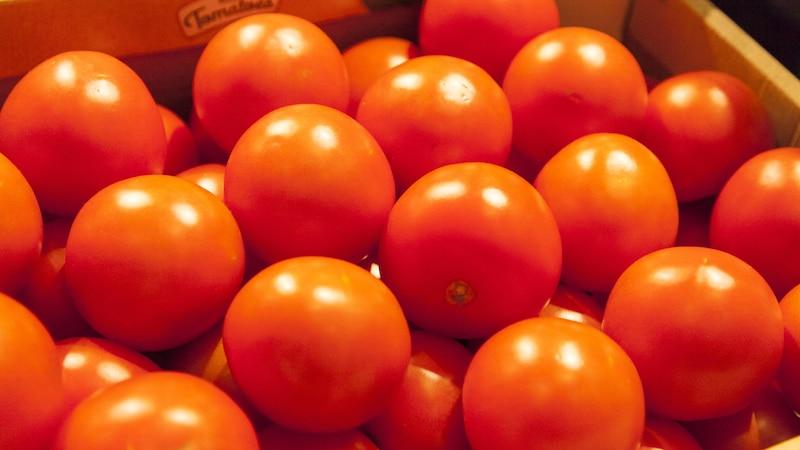 Gelbe Blätter bei Tomaten - so lösen Sie das Problem