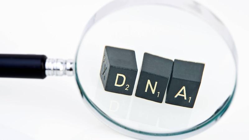 Was ist der Unterschied zwischen DNA und RNA? Einfach erklärt