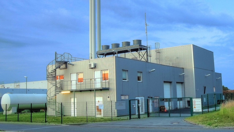 Biomasse: Energie aus organischen Stoffen - Ein Überblick