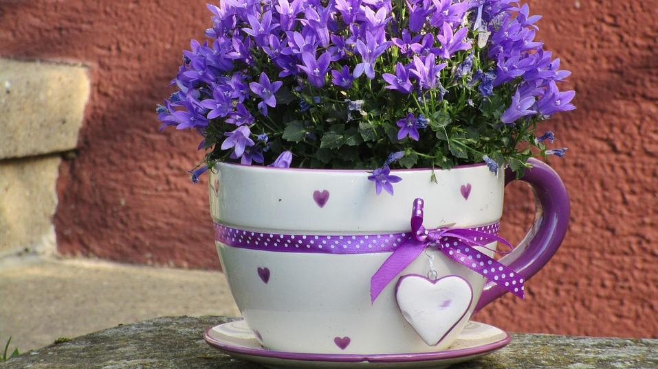 Altes Geschirr eignet sich hervorragend, um daraus Blumentöpfe selber zu machen.
