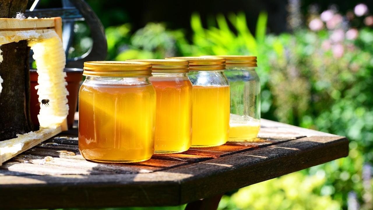 Wenn Sie Hobbyimker werden, können Sie Ihre Freunde und Familie bald mit eigenem Honig beschenken.