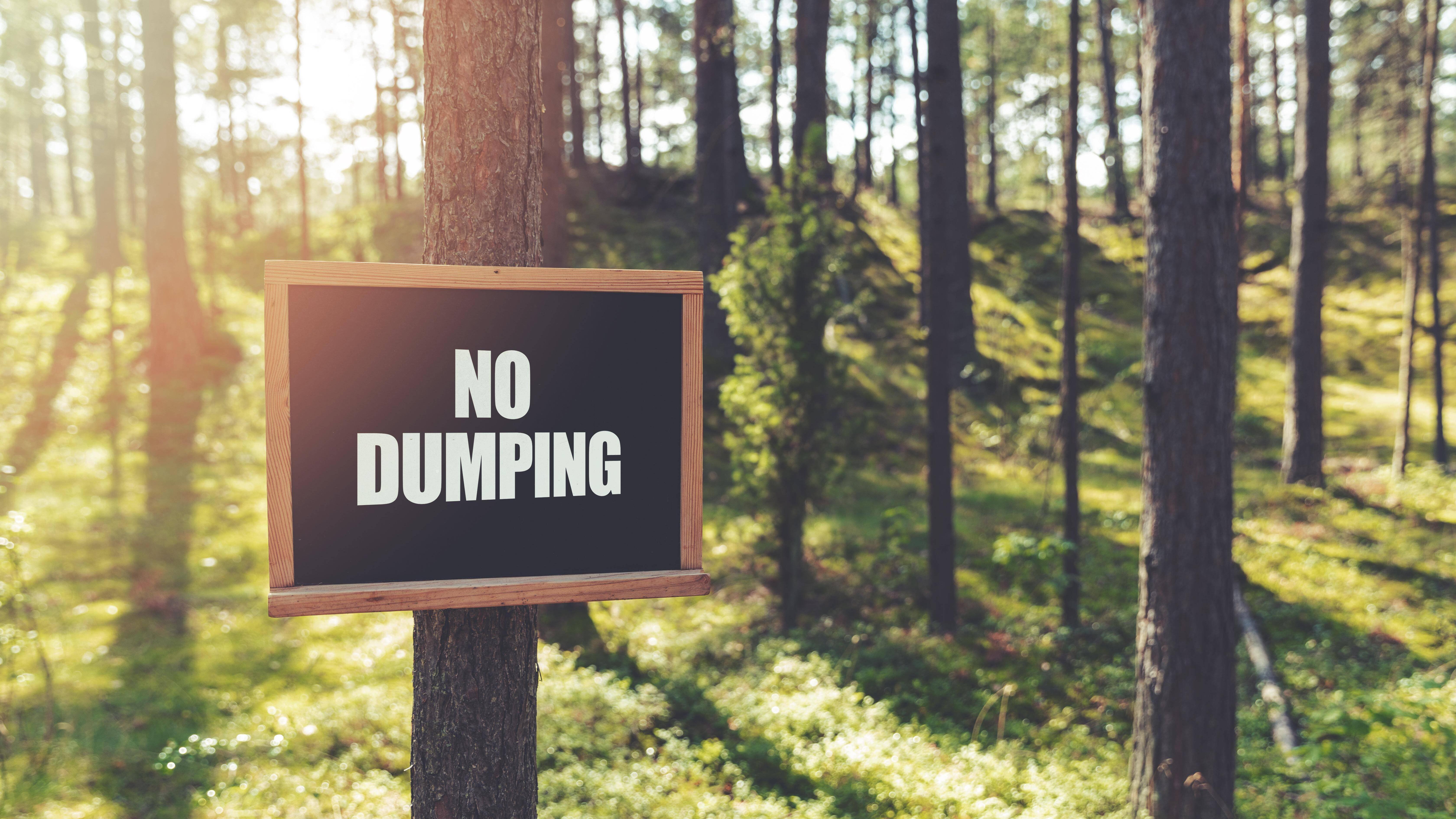 Müll im Wald schädigt Natur, Tier und Mensch.