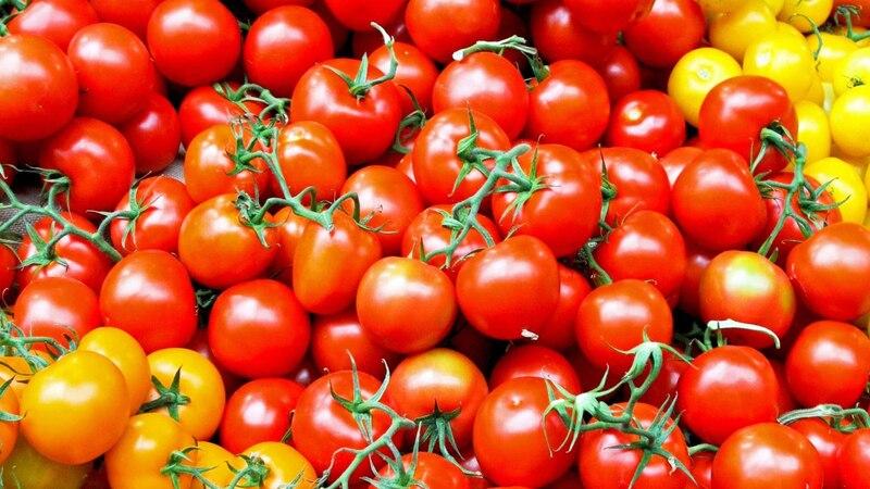 Tomate im Kühlschrank  lagern - das müssen Sie wissen