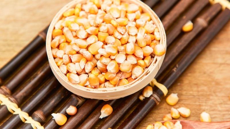 Mais ist gesund und auch beim Stillen kein Problem