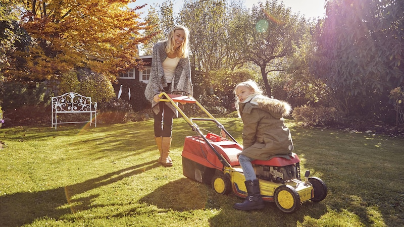 Kahle Stellen im Rasen: Das können Sie tun
