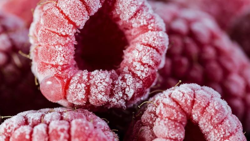 Einmal aufgetaute Früchte werden bei einem nochmaligen Einfrieren nicht mehr so intakt aussehen.