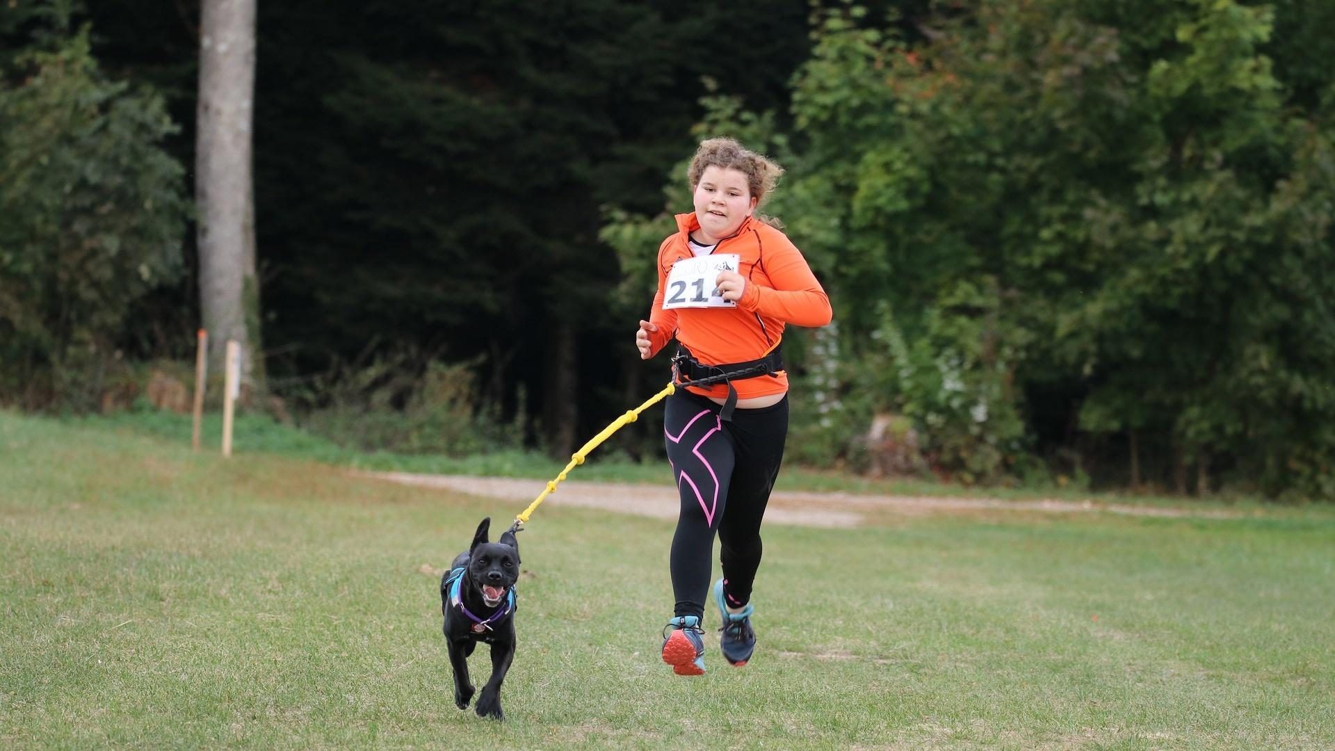 Canicross mit Hund: Das müssen Sie beachten