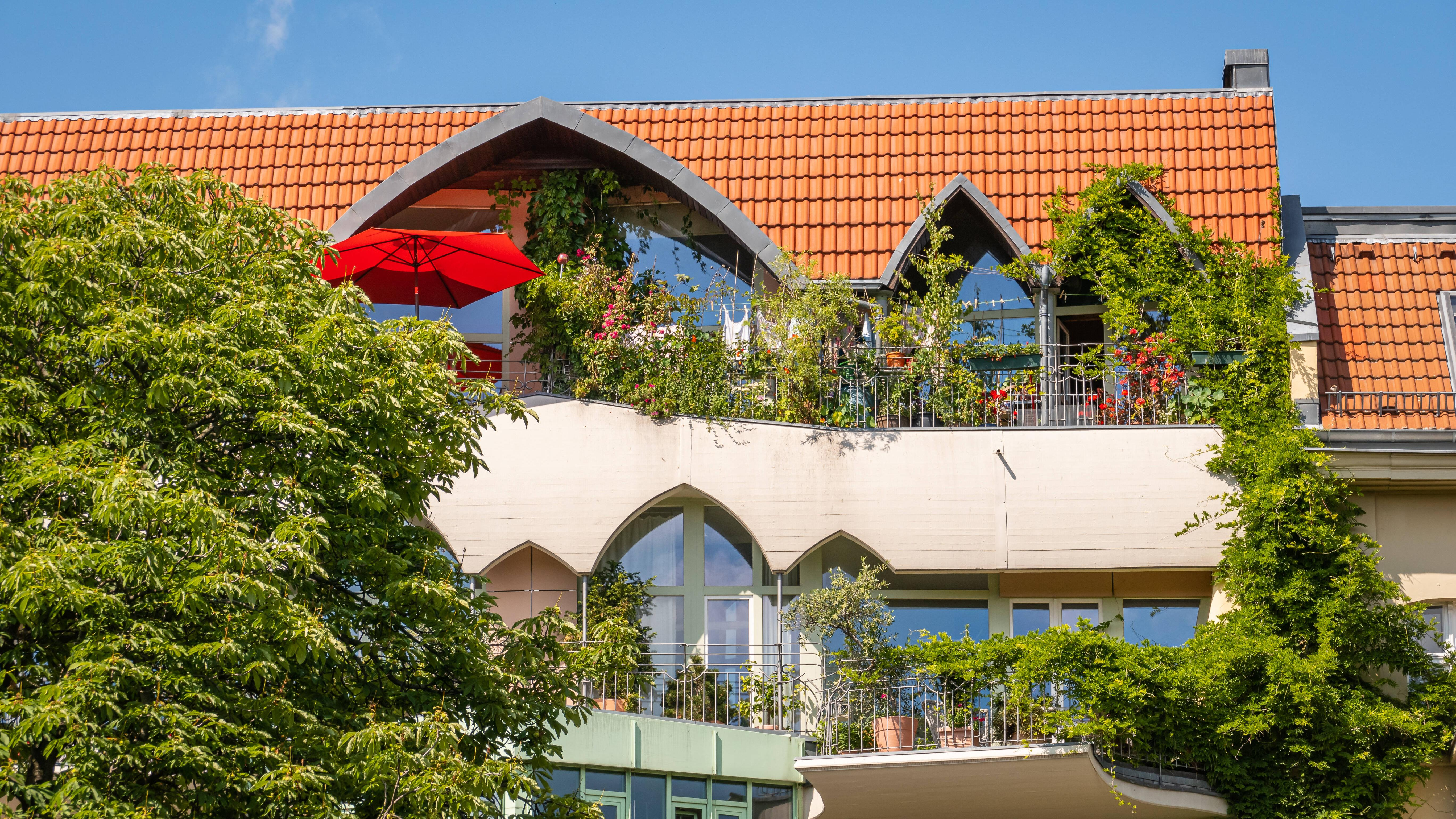 Die besten Pflanzen für den Balkon