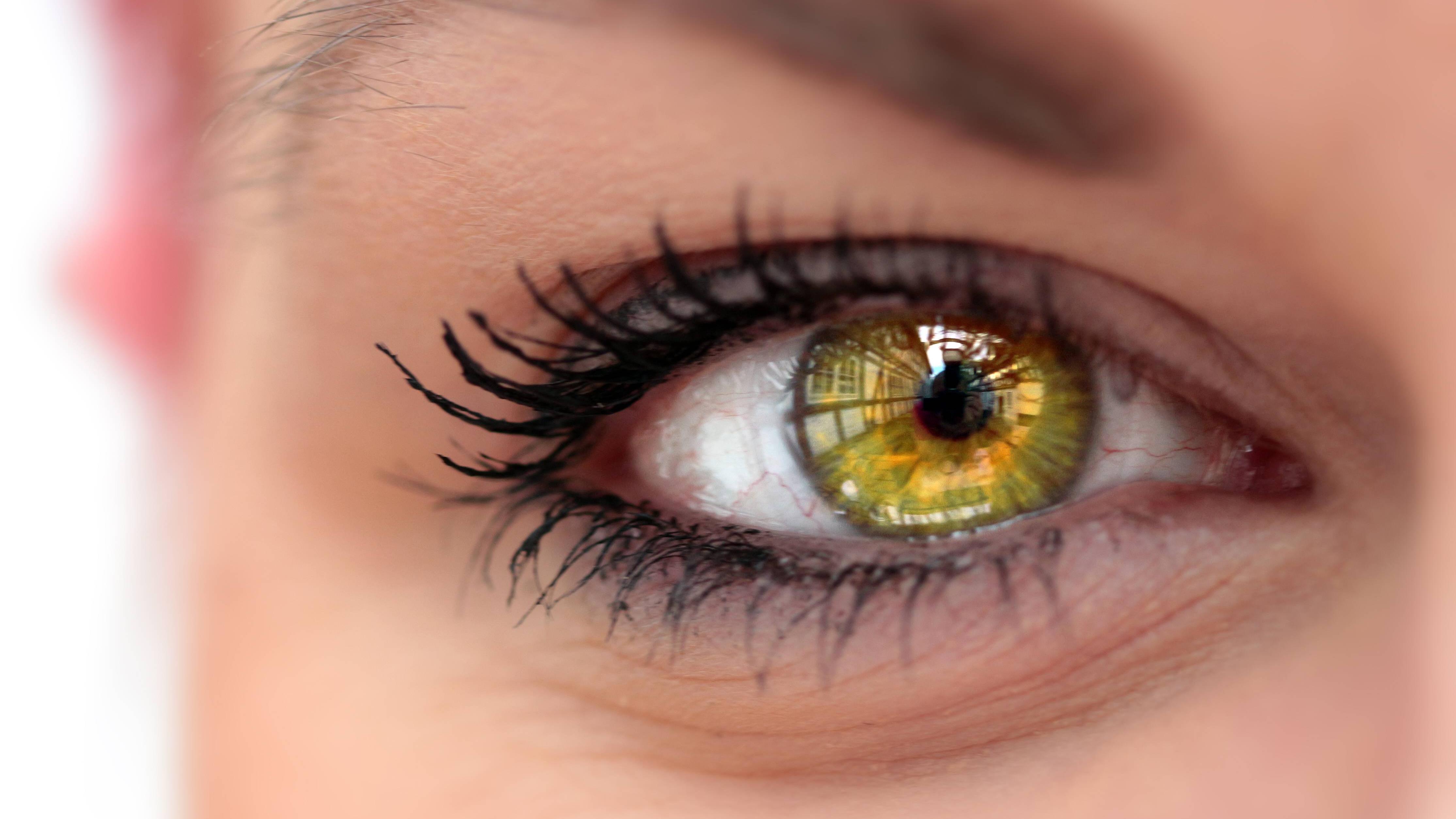 Welcher Lidschatten passt zu grünen Augen? 5 Schminktipps