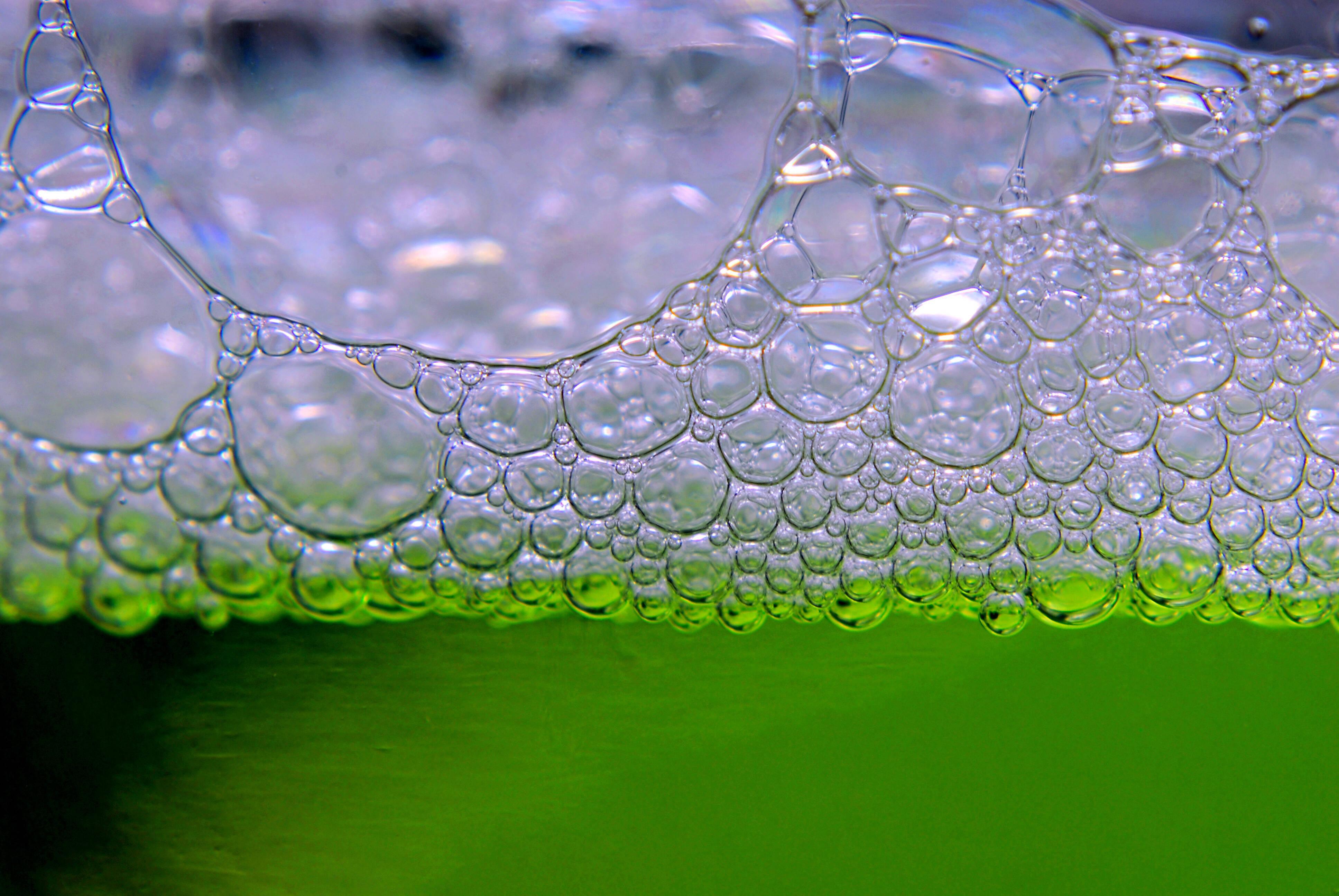 Entfernen Sie Grünbelag an der Hauswand mit dem Hausmittel Schmierseife.