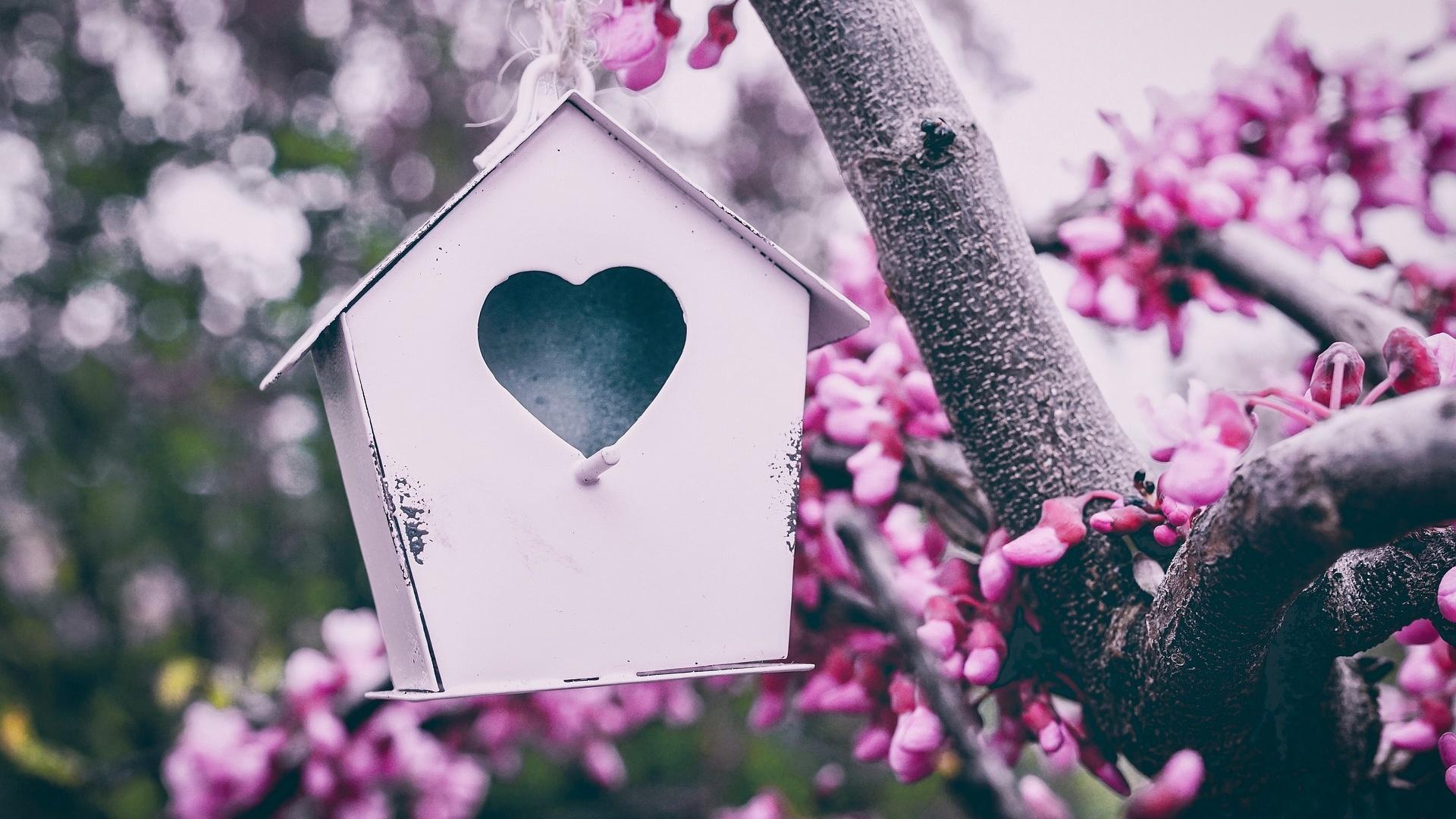 Ein Vogelhaus ist eines der beliebten Geschenke für Gartenfreunde.