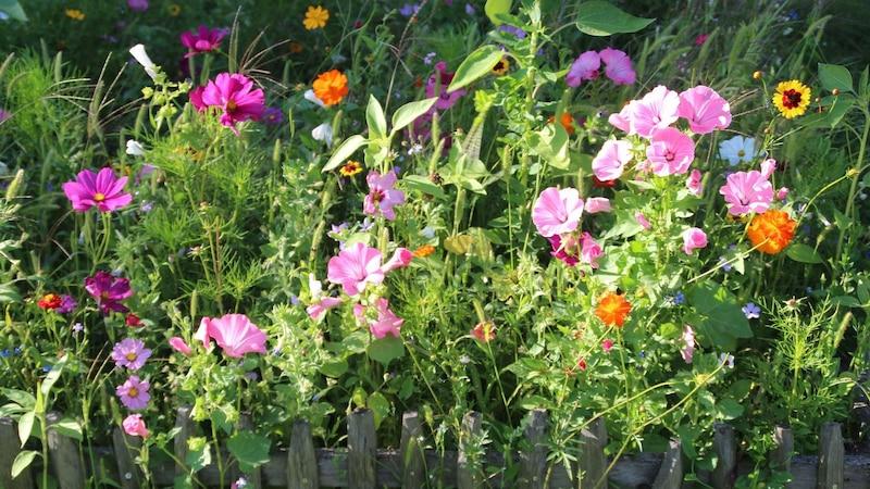Geschenke für Gartenfreunde: 5 passende Ideen