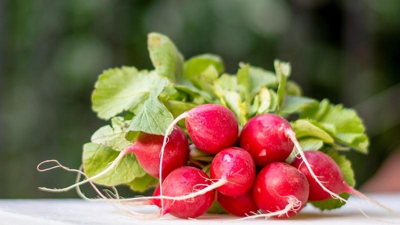 Radieschenblätter essen: Ideen zur Zubereitung